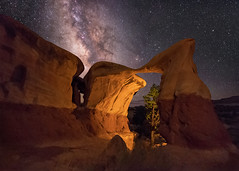 Matate Arch in Devils Garden, Escalante (Wayne Pinkston) Tags: metatearch arch escapade grandstaircase devilsgarden night sky nightsky nightlandscape nightphotography nightscape dramaticsky lowlevellighting lll waynepinkston waynepinkstonphotocom lightcrafter lightcraftercom stars starrynight milkyway galaxy cosmos theheavens atronomy astrophotography widefieldastrophotography landscapeastrophotography nikon