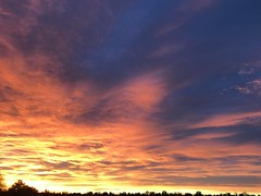 Horizon (f l a m i n g o) Tags: 2017 26th october sunrise lakewood morning sky clouds
