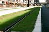 lawn (miho's dad) Tags: carlzeissvariosonnart35452870 contaxrx fujicolor100