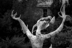 Samhein is Coming (Bert CR) Tags: elo samheiniscoming samhein halloween scary festivalofthedead liminal ritual trickortreat blackandwhite blackwhite bw monochrome skancheli ghoulish devilsnight elora