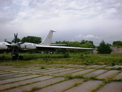 "Tupolev Tu-142M3 29 • <a style=""font-size:0.8em;"" href=""http://www.flickr.com/photos/81723459@N04/23710809218/"" target=""_blank"">View on Flickr</a>"