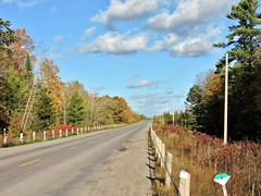 Country road (Will S.) Tags: mypics springbrook ontario canada road autumn fall