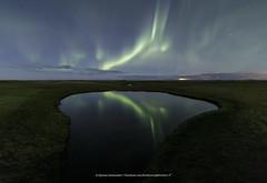 Pond (Kjartan Guðmundur) Tags: iceland ísland auroraborealis northernlights pond grass field stars sky nocturne nightscape canoneos5dmarkiv tokinaatx1628mmf28profx kjartanguðmundur arctic photoguide tourguide reflection
