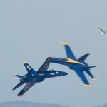 Blue Angels opposing soloists roll canopy to canopy DSC_1482 thumbnail