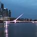 Argentina 2017 10-04 2 Argentina Buenos Aires Puente De La Mujer Night IMG_4703