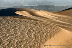 First Light (Gary Grossman) Tags: deathvalley dunes sanddunes garygrossman garygrossmanphotography sand sculpted mesquitedunes morning early morninglight landscape landscapephotography nationalpark nature fall autumn