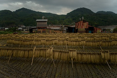 Woodworking plant. (Yasuyuki Oomagari) Tags: plant factory autumun cloud cloudy rice field drying country countryside evening nikon d810 zeiss distagont225