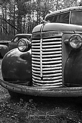 Granddad's Old Chevy (Laura Simonsen Braun) Tags: blackandwhite chevytrucks truck iron rusty old