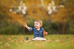Fall's Magic (DanaZarzycki) Tags: fall autumn child kids children leaves color trees michigan orange yellow danarosephotography toddler