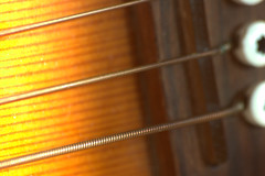 strings for  #MacroMondays and #Member'sChoiceMusicalInstruments (jp Chambard) Tags: macromondays memberschoicemusicalinstruments macro mondays hmm