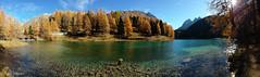 The wonderful Lake Palpuogna (Vincent_Thonnart) Tags: lai da palpuognasee oberengadin herbst autumn graubünden grisons palpuogna bergün