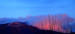 BLUE MOODY BLUES (Lani Elliott) Tags: lanielliott nature naturephotography sky skies cloud clouds trees silhouettes mountain mountwellington kunanyi mood moody misty foggy pink blue color colourful colour atmosphere atmospheric landscape scene scenic view scenictasmania bluesky fantastic awesome beautiful wow gorgeous wonderful