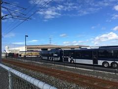 NZBus Onehunga Depot (CR1 Ford LTD) Tags: onehungabusdepot busdepot atmetrobuses nzbusonehungadepot man17223 atmetroman17223 buses bus omnibus publictransport onehunga metrolinkman17223 metrolink