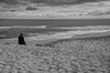 """Tithe"" (Photography by Sharon Farrell) Tags: holgate holgatenj holgatenewjersey longbeachtownship beachhaveninlet newjersey jersey longbeachisland lbi longbeachislandnewjersey jerseyshore barrierisland summercolony noiretblanc blackandwhite atlanticocean eastcoast atlanticseaboard ocean water"