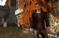 Shades of Brown (chic aeon) Tags: festyle adclothing exmachina mina