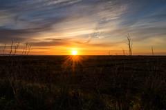 Sunrise (@bill_11) Tags: isleofthanet naturereserve sunrise pegwellbay places themes kent weather england cliffsend unitedkingdom gb