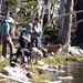 Bella and teh water dogs at Tamarack Lake