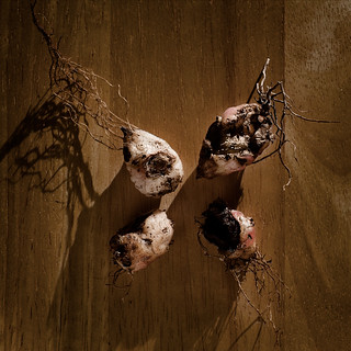 Still Life with Zombie Potatoes