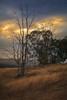 Triste Atardecer (Juan Pablo J.) Tags: color california canon24105mmf4l canon5dmkii outdoors landscapes sunset sunsetmadness sundown nature