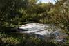 River Tyne Weir, Haddington, Scotland (Colin McLurg) Tags: weir rivertyne scoland haddington countryside colinmclurg eastlothian