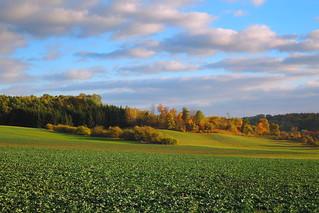 Autumn landscape / Podzimní krajina