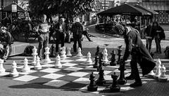 Calculated (thedailyjaw) Tags: amsterdam northholland netherlands chess bw blackwhite x100f fuji fujifilm game mind europe