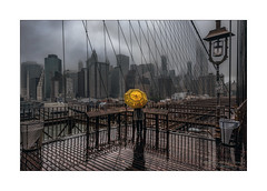 Yellow (Nico Geerlings) Tags: ngimages nicogeerlings nicogeerlingsphotography nyc ny usa newyorkcity brooklyn brooklynbridge view rain rainy raining umbrella yellowcab taxi thunderstorm heavyrain financialdistrict manhattan streetphotography cinematic