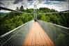 2017-08_D70_6936_20170904 (Réal Filion) Tags: québec canada coaticook pont suspendu cable sentier piéton vertige arbre pedestrian dizzy vertigo footpath suspensionbridge tree quebec