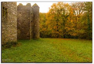 Careys Castle #2