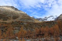 Lötschental (bulbocode909) Tags: valais suisse lötschental montagnes nature paysages automne neige nuages arbres mélèzes bleu orange