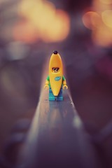 banana banana (christian mu) Tags: münster muenster germany bokeh depthoffield dof lego legominifiguren legominifigures bricks distagon3514 distagon christianmu sonya7ii sony zeiss toys bananaman funny joke 35mm 3514