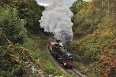 44806 (paul_braybrook) Tags: 44806 lms class5 black5 steamlocomotive northyorkshiremoors beckhole heritage freight grosmont goathland railway trains