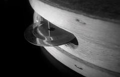 tambourine (vriesia2) Tags: metal tambourine pandereta musicalinstruments music metallic macromondays memberschoicemusicalinstruments