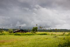 Goa in August (Anoop Negi) Tags: monsoon august goa india mapusa porvorim nh 17 highway farmland rice storm clouds rains electric pole crosses tube lights anoop negi photo photography ezee123