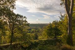 Old Sarum Views (Crisp-13) Tags: old sarum castle ramparts salisbury wiltshire wise angle tree blue sky cloud