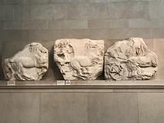 IMG_1802 (Andy961) Tags: uk england london britishmuseum museums elginmarbles greek sculpture antiquties