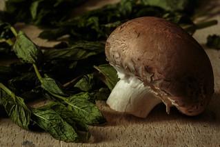 Mushroom - HMM!