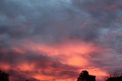 Sunrise (cynthiarobb) Tags: