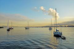 norland d. cruz photography: anchored boats at sunset (norlandcruz74) Tags: anchored waterscape dx d5100 nikon american filipino pilipino pinoy norlandcruz sunset america usa us new city jersey hudsonriver boats