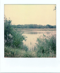 South West Area Park - Pond (m.ashe7) Tags: polaroidoriginals polaroid instant po sx70 industrial washedout instantfilm parks