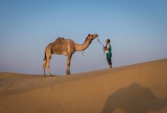 Rajasthan - Jaisalmer - Desert Safari with Camels-48