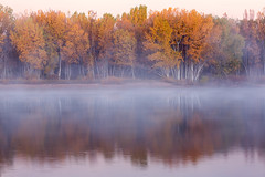 Autumn Mist (mclcbooks) Tags: dawn sunrise daybreak morning mist trees autumn fall lake reflections chatfieldstatepark lakechatfield colorado landscape