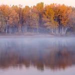 Autumn Mist thumbnail