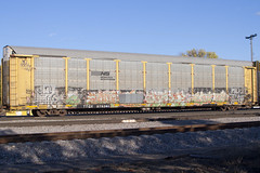Natrl Beg King157 (Psychedelic Wardad) Tags: freight graffiti wcf tmf ca tdk icp fsc rtm king157 weedheads wh nsf otr dirty30 d30 wge begr beg rsn natrl