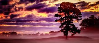 Fog lingering at Sunrise over the Battlefield...