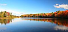 Lac d'automne / Autumn lake (deplour) Tags: lac irishtown lake automne autumn feuilles leaves