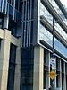 2017 Sydney: Newtown #6 (dominotic) Tags: 2017 traffic street sign carillonavenewtown moorecollage reflectedclouds bluesky innersydney newtown jacarandatree purple bikerider iphone8 sydney australia