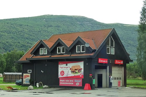 217. Norvège