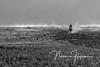 East to West (ninaflynnphotography) Tags: sukapura jawatimur indonesia bromo horserider bw blackandwhite morning mist