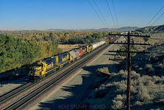 November morning at Helendale (rolfstumpf) Tags: usa california mojavedesert helendale santafe trains railway railroad fall fallfoliage autumn desert telegraph codeline emd gp50 freight atsf cajonsub atsf3827